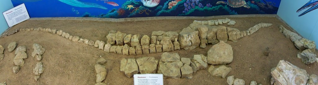 Plesiosaur at the Stone House Museum, Boulia