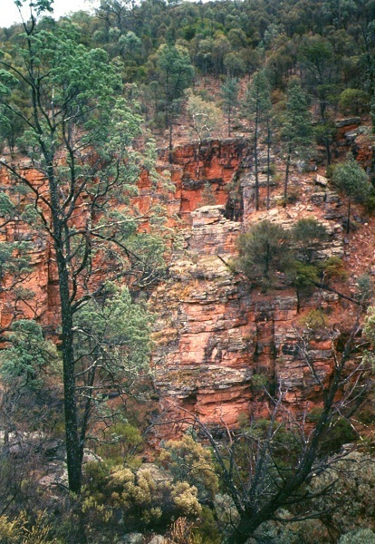 Red Rocks, Grampians, Victoria