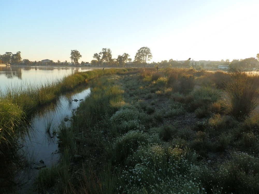Dawn in Shepparton, Victoria