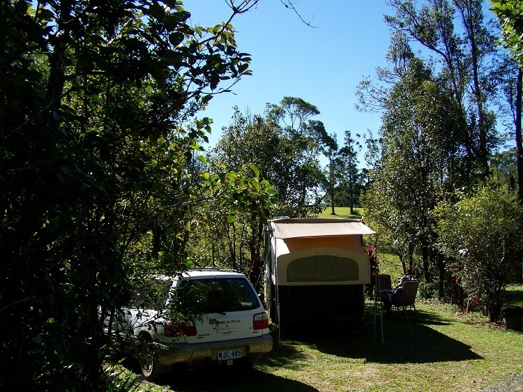 Millaa Millaa Caravan Park Campsite