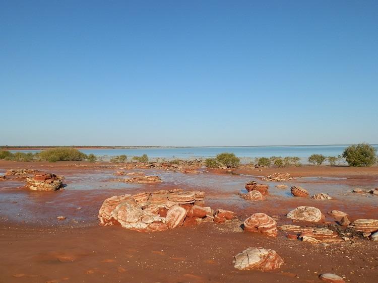 Rocks at Roebuck Bay, Broome Bird Observatory
