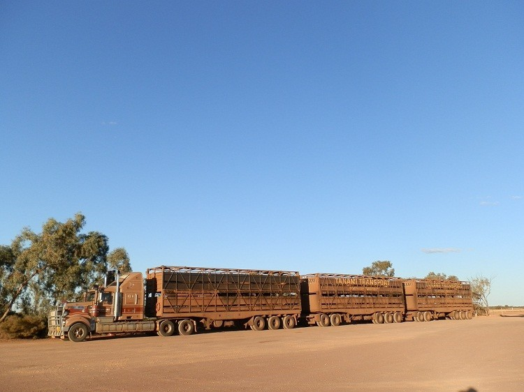 Road Train at Cadney Park Roadhouse, South Australia