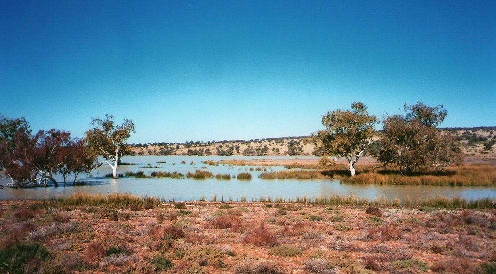 Lake Peery, Paroo-Darling National Park, via White Cliffs, New South Wales