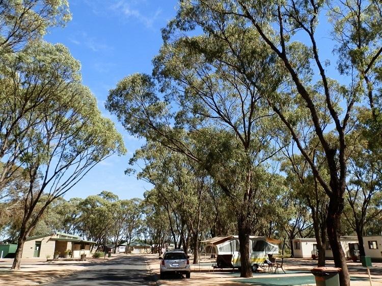 Waikerie Caravan Park, Waikerie, South Australia