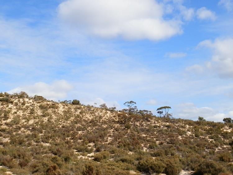 Dunes at Wyperfeld National Park, Victoria