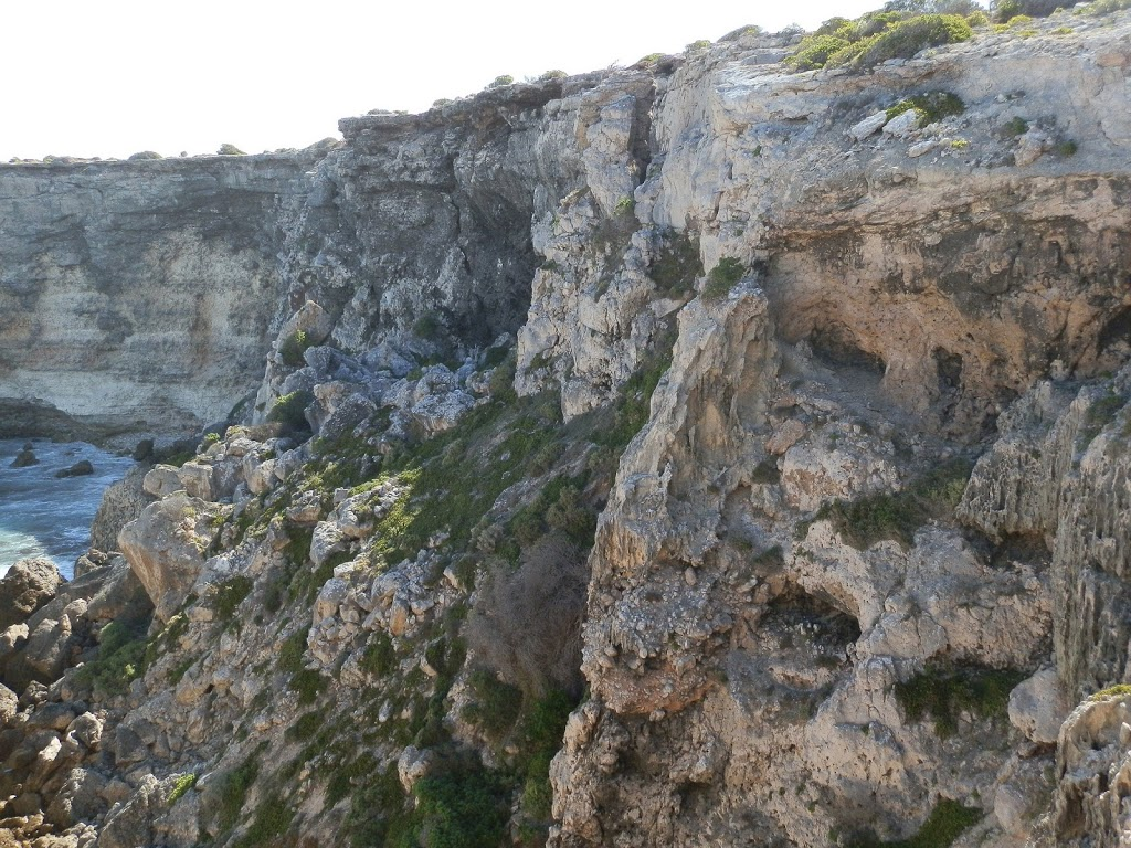 Bunda Cliffs up Close, Head of Bight, Nullarbor Plain