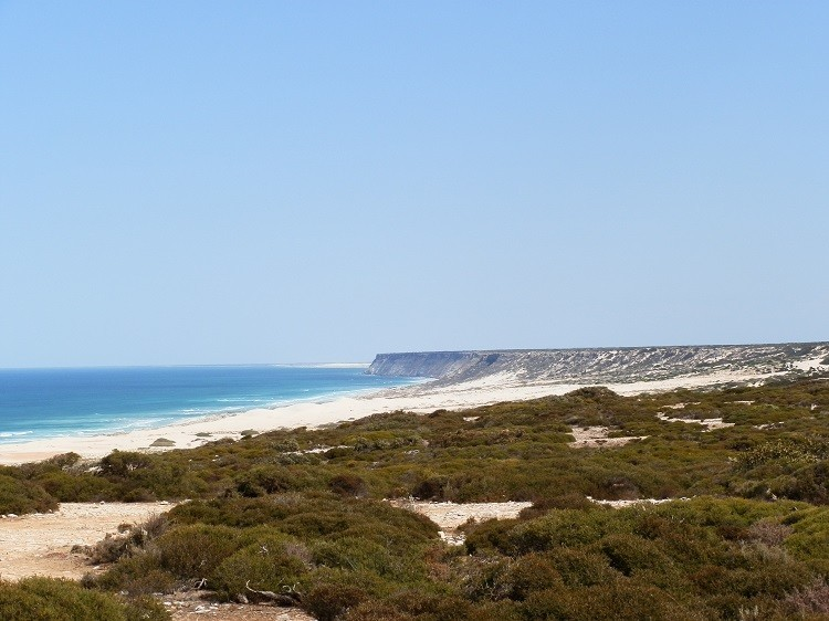 The Bunda Cliffs and Bight, Eyre Highway, South Australia