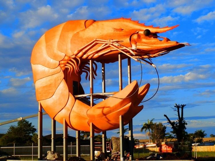 Big Prawn MAGIC! Ballina, New South Wales