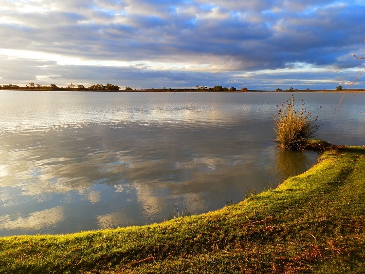 Late Afternoon at Lake Cullulleraine, via Mildura, Victoria
