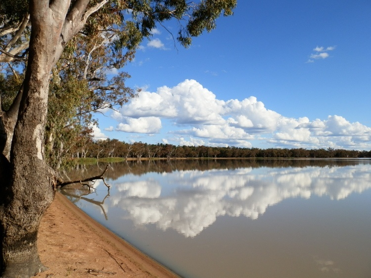 Yarrie Lake Reflections, via Narrabri