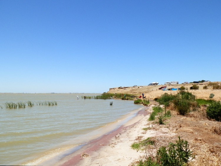 Mark Point Campground, Lake Alexandrina, South Australia