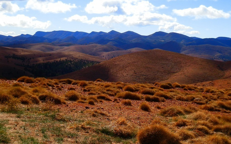 Wilpena Range from outside Wilpena Pound, Flinders Ranges, South Australia