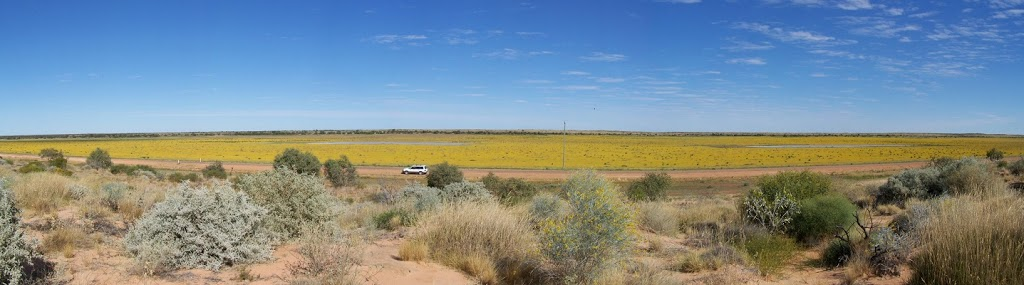 Outback near Bedourie, Queensland
