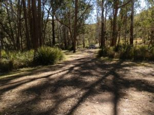 Koreelah National Park Campground