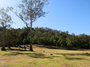 Andrew Drynan Park Campground, Queensland