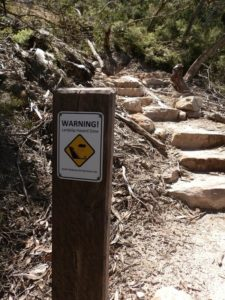 Warning Sign, Mt Abrupt