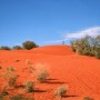 Red on RED! Dunes at Windorah, Outback Queensland