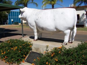 The White Bull, Aramac, Queensland