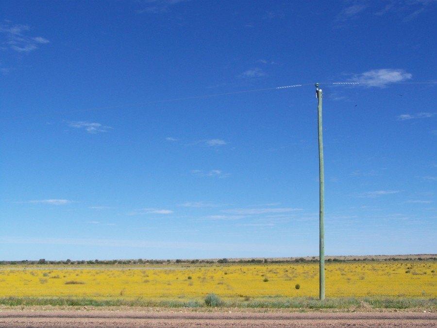 Bedourie Landscape, Queensland