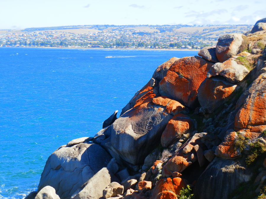 Coastal Scenery near Victor Harbor, South Australia