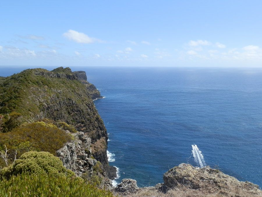 Clifftop Trail from Malabar Hill to Kims Lookout, Lord Howe Island