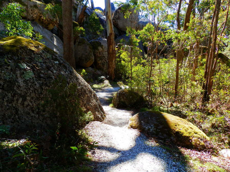 Bald Rock Climb Walking Trail, via Tenterfield NSW