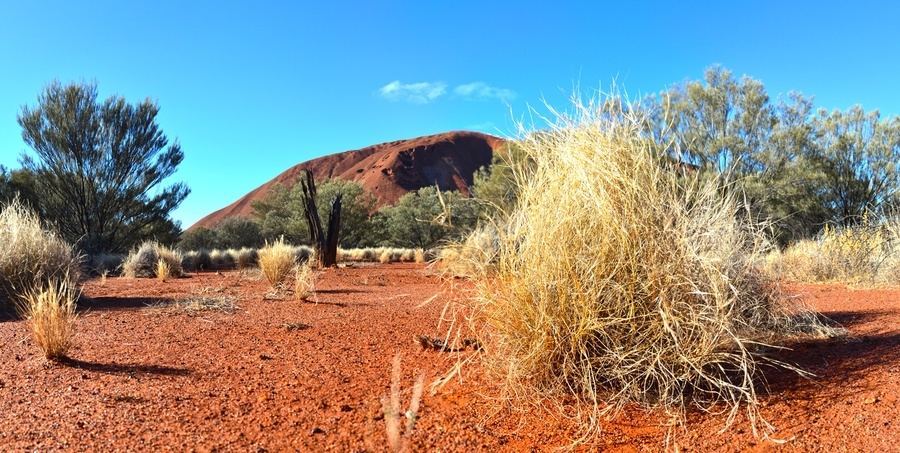 Uluru (Photo Courtesy of Neil Fahey, Bushwalking Blog)