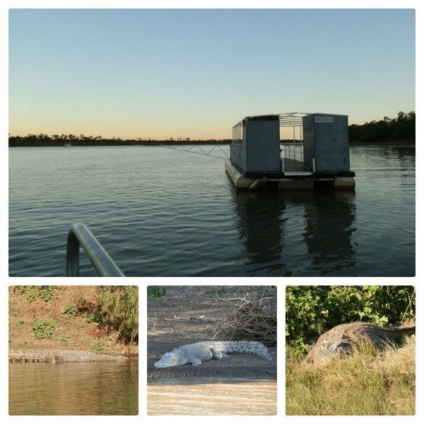 Timber Creek Pontoon Loo with a selection of Victoria River Crocodiles!