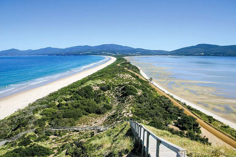 The Neck, Bruny Island, Tasmania*