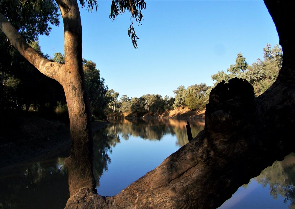 Bulloo River from Weir, Thargomindah, Outback Queensland