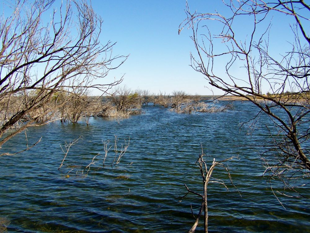 Lake Bindegolly, via Thargomindah, Outback Queensland