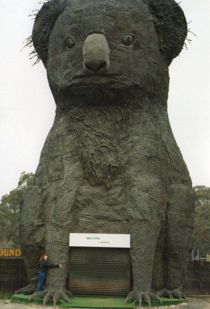 The Big Koala many years ago, Dadswells Bridge, Victoria