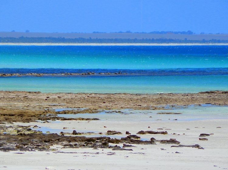 Hardwicke Bay, Yorke Peninsula, South Australia