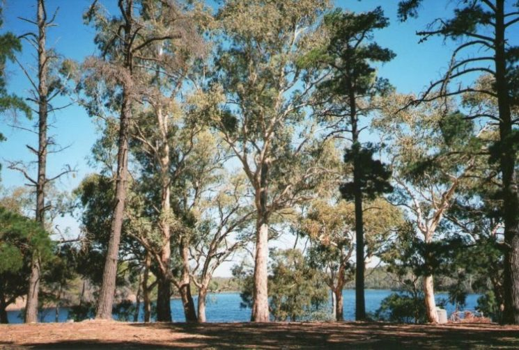 Whispering Wall Picnic Area, Barossa Valley Reservoir, Adelaide