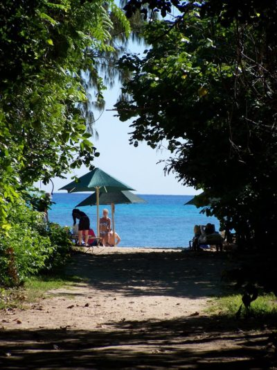 The Beach from the Rainforest Boardwalk, Green Island