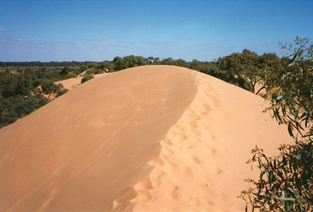 Footprints - Perrys Sandhill, Wentworth, New South Wales