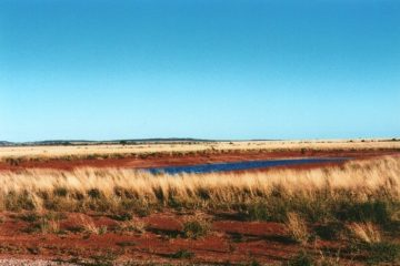 White Cliffs Waterhole, Outback New South Wales