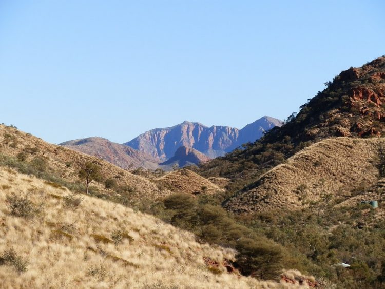 Mt Sonder from Ormiston Gorge and Pound trail, West MacDonnell National Park, Central Australia