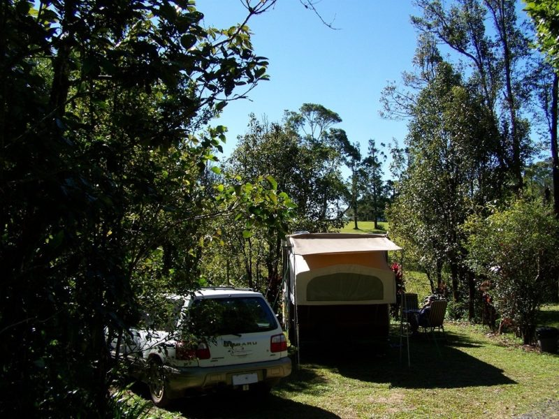 Millaa Millaa Tourist Park Camp site, Atherton Tableland, Far North Queensland