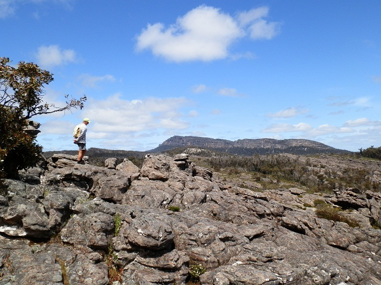 Pilchard and the Sleeping Giant behind the Pinnacle, Grampians National Park