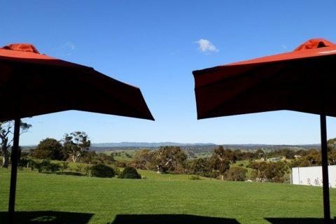 Umbrellas at Tenafeate Creek Wines, Adelaide Hills, South Australia
