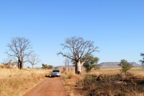 En Route to Marlgu Billabong, via Wyndham, Western Australia