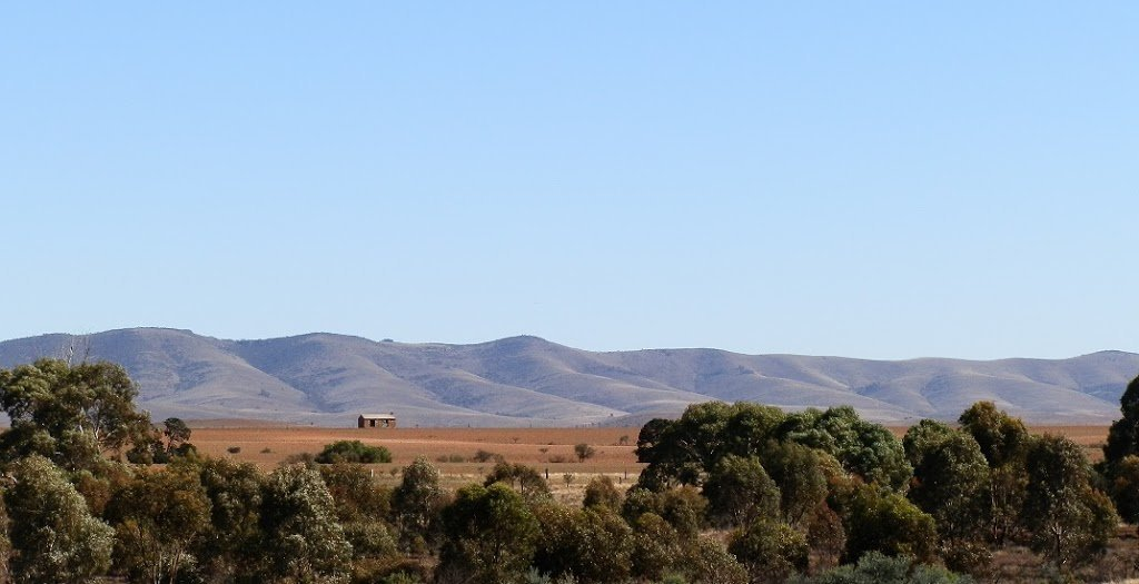 Horseshoe Range from Carrieton, South Australia