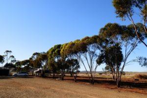 Horseshoe View Caravan Park Campsite, Carrieton South Australia