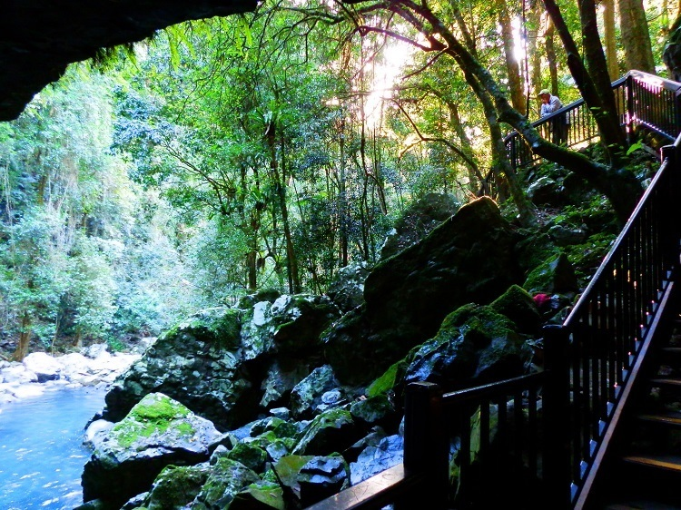 Pilchard at Natural Bridge
