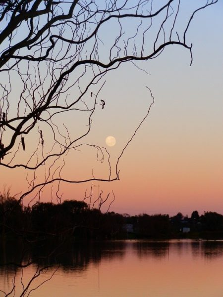 Moon at Sunrise, Lake Cullulleraine, via Mildura, Victoria
