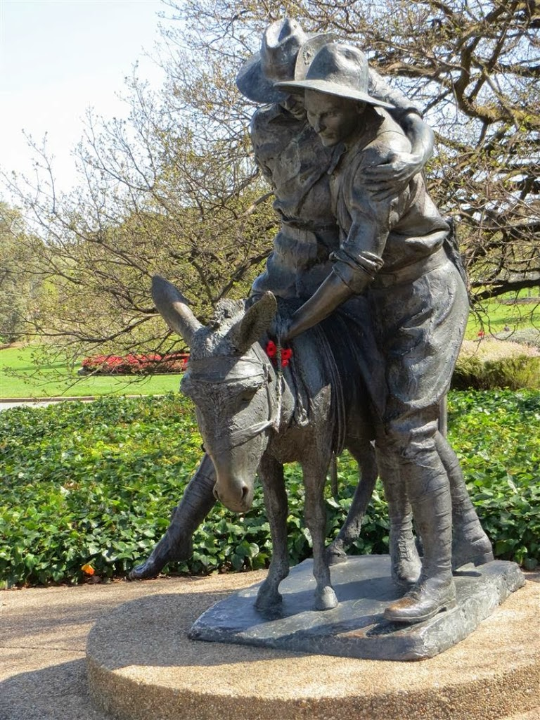 Simpson Statue with Flanders Poppies at Canberra War Memorial