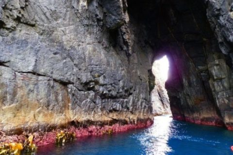 Sea Cave Bruny Island