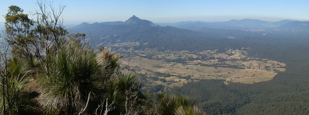 Mt Warning from Pinnacle Lookout