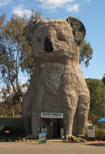 Big Koala, Dadswells Bridge, Victoria, Australia
